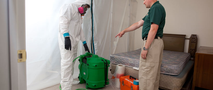 Summerville, SC mold removal process